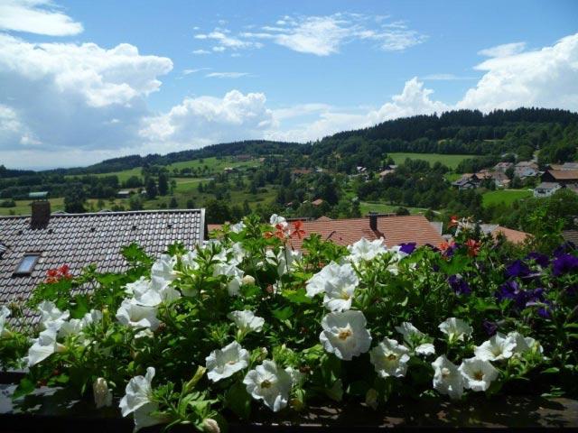Blick vom Balkon mit Blumen im Sommer