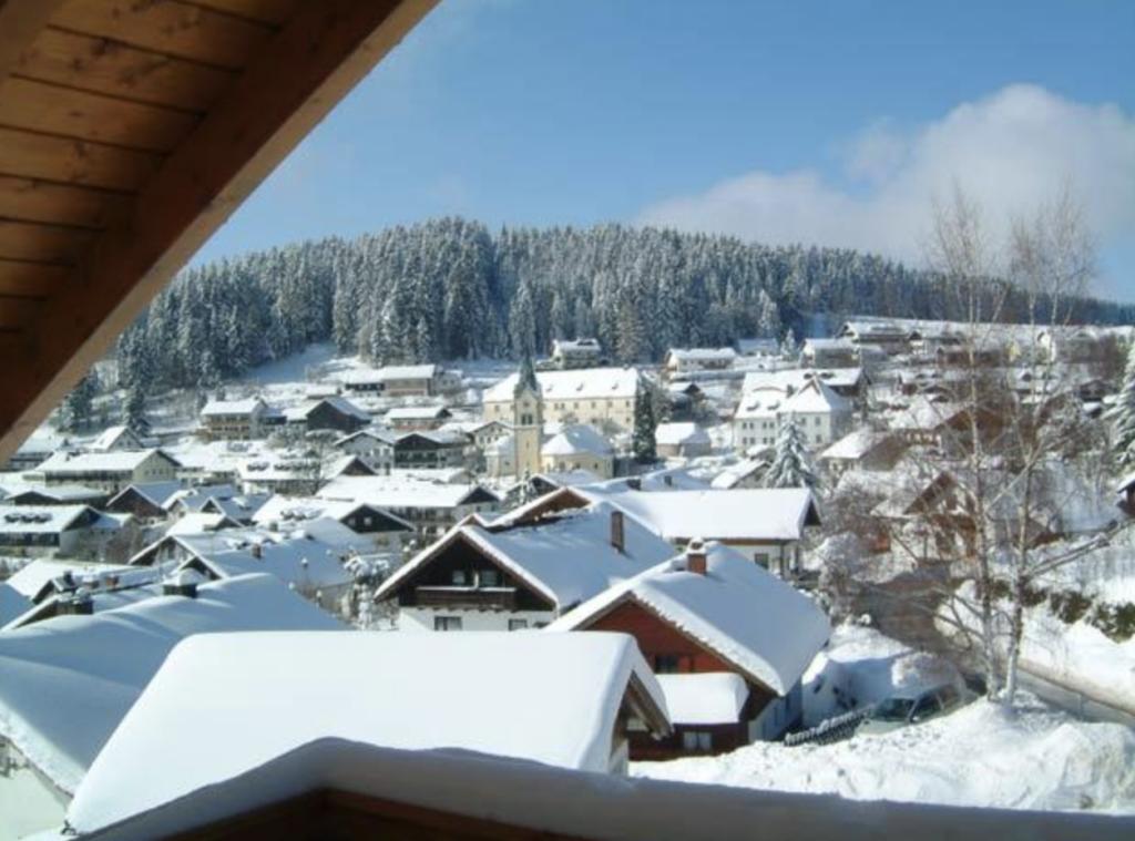 Blick auf Sankt Englmar im Winter mit Schnee
